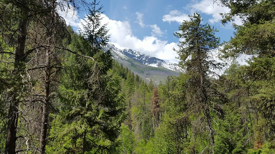 great-view-kootenai